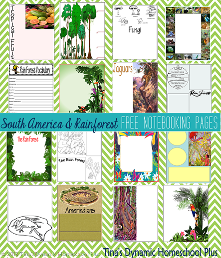 South America and Rainforest Collage @ Tina's Dynamic Homeschool Plus