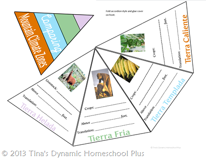 Comparing Mountain Zones - Andes @ Tina's Dynamic Homeschool Plus