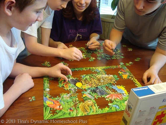 Hands On Homeschooling Using Puzzles